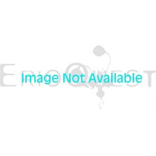 オーニソガラム sp. 実生 1170