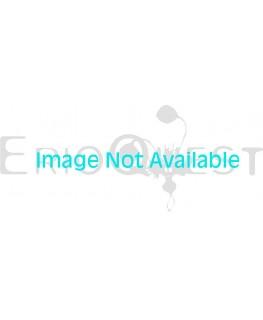 オーニソガラム sp. 実生 1168